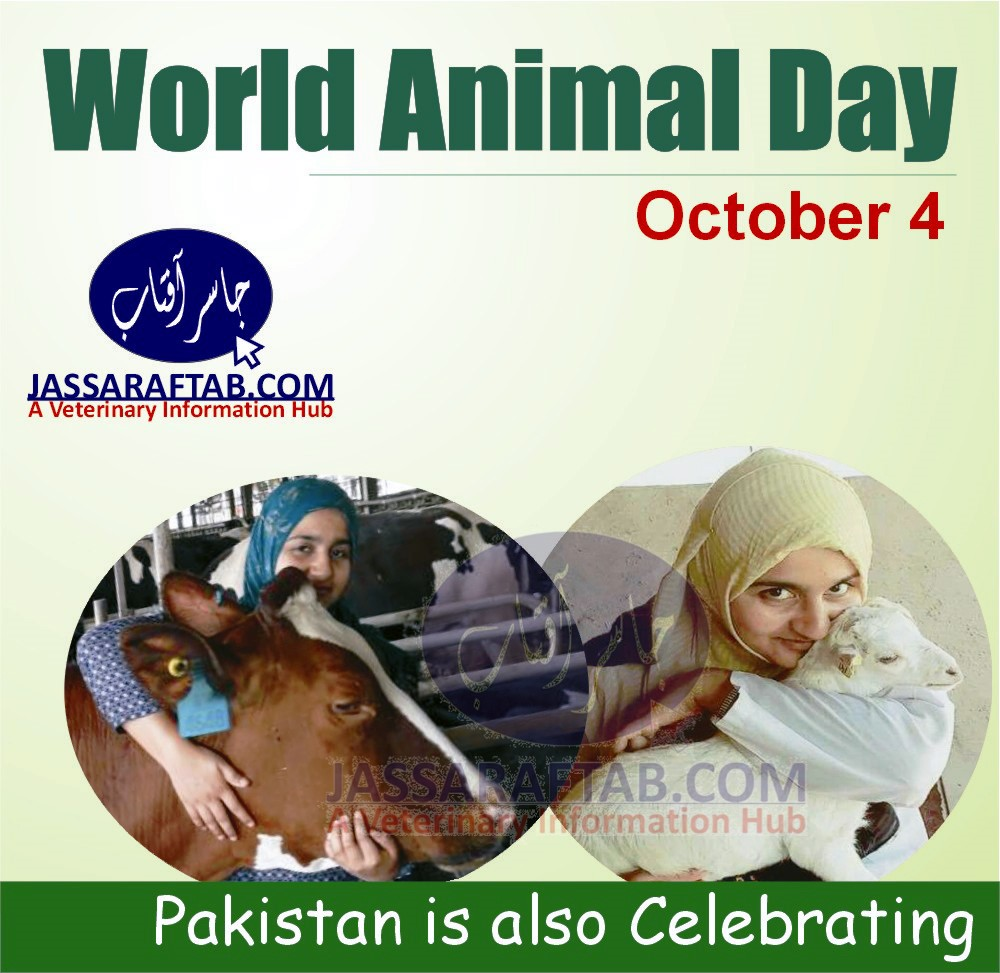 World Animal Day in Pakistan
