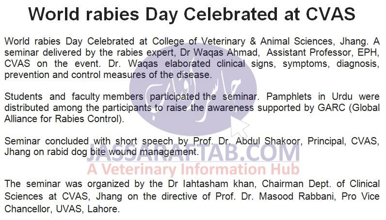 World Rabies Day CVAS Jhang