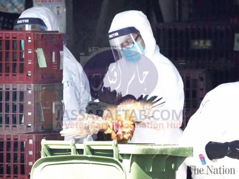 brd flu vaccine effective