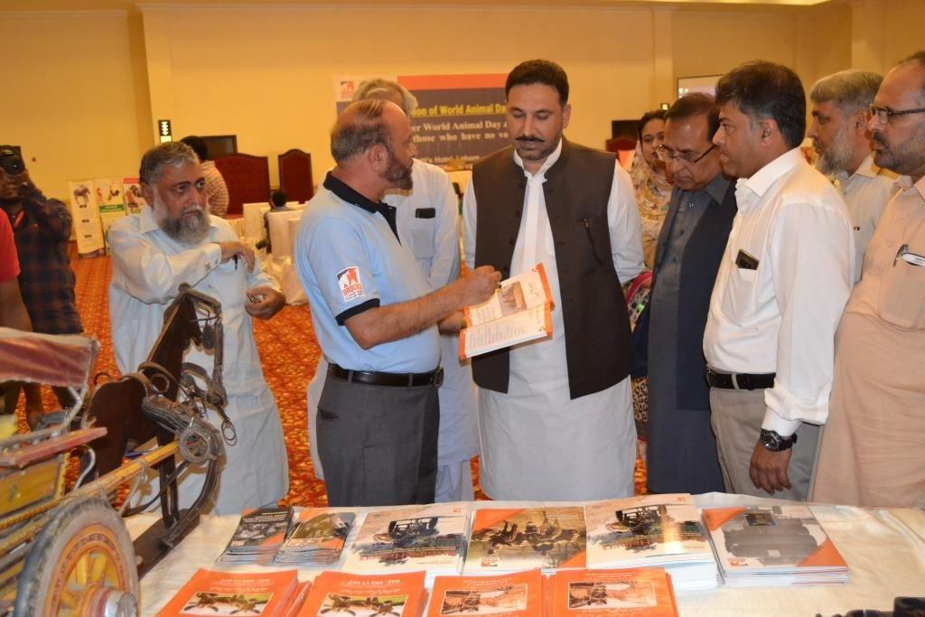 Col Arshad Ansari, Brook Pakistan