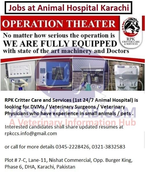 RPK Critter Care & Services