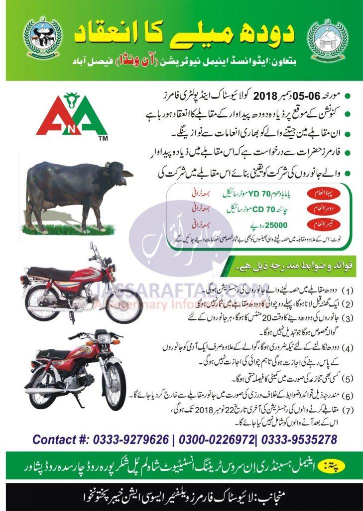Milk Competition Peshawar