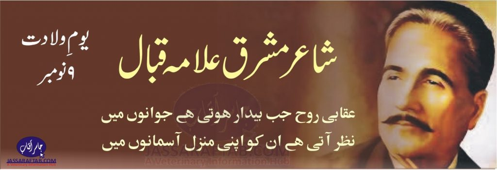 Iqbal Day, 9 Nov, Shair e Mashriq Allama Iqbal