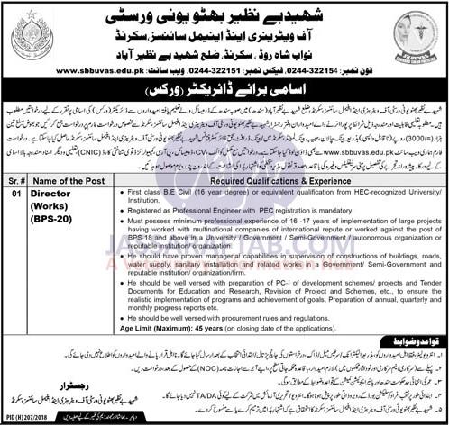 Benazir Veterinary University Job