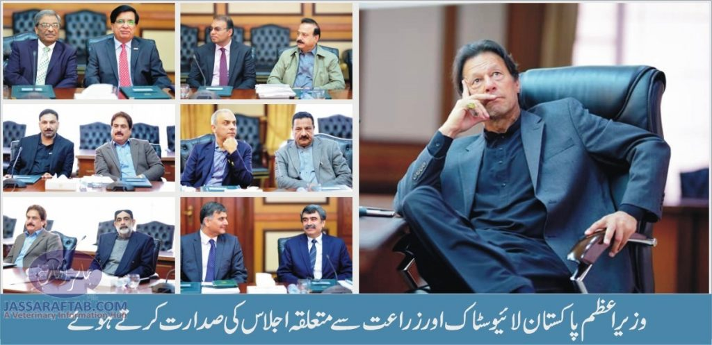 Prime Minister Chairing the Meeting of Livestock Sector