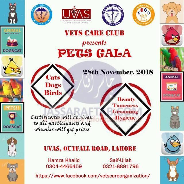 Pets Gala