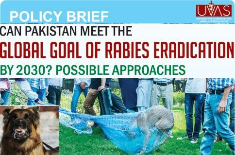 Rabies Eradication