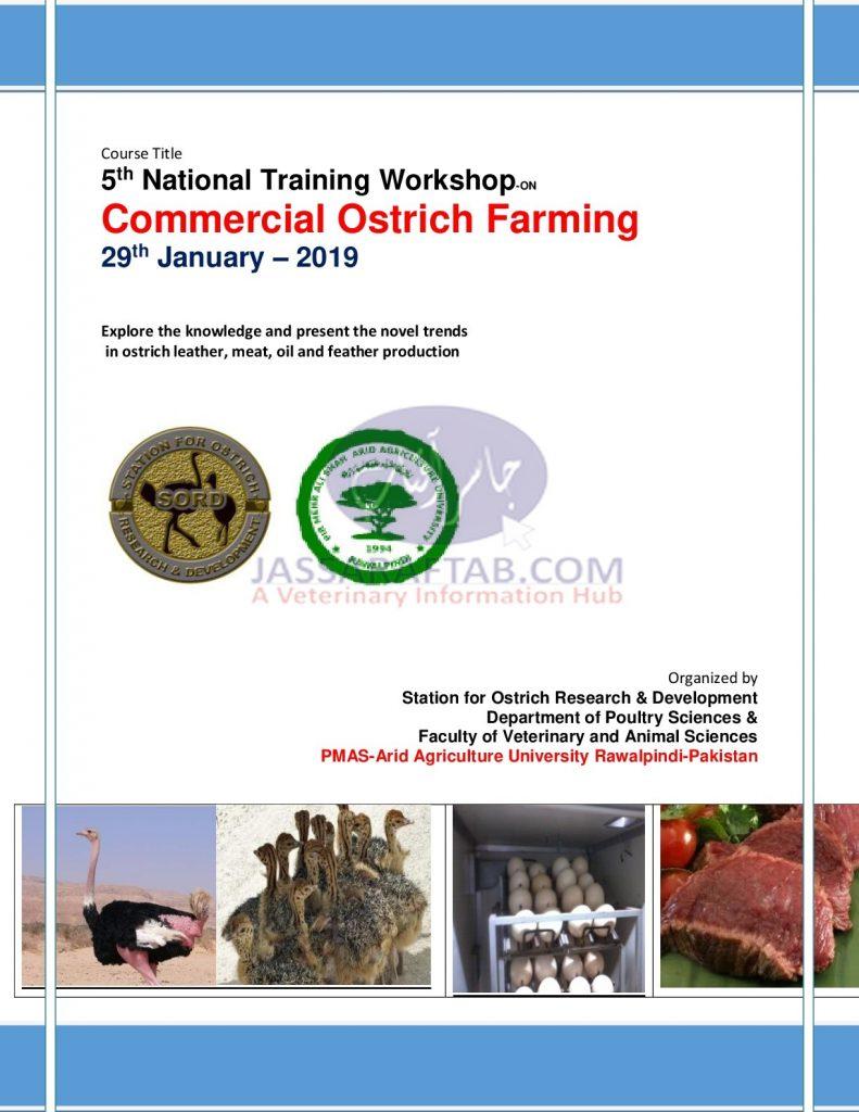 ostrich farming training