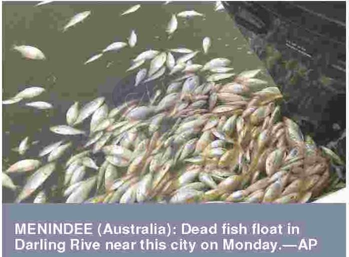 Australia's darling river system