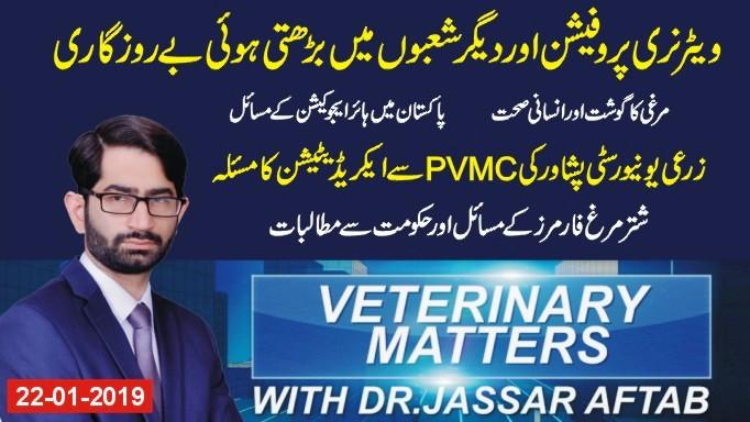 veterinary matters second program