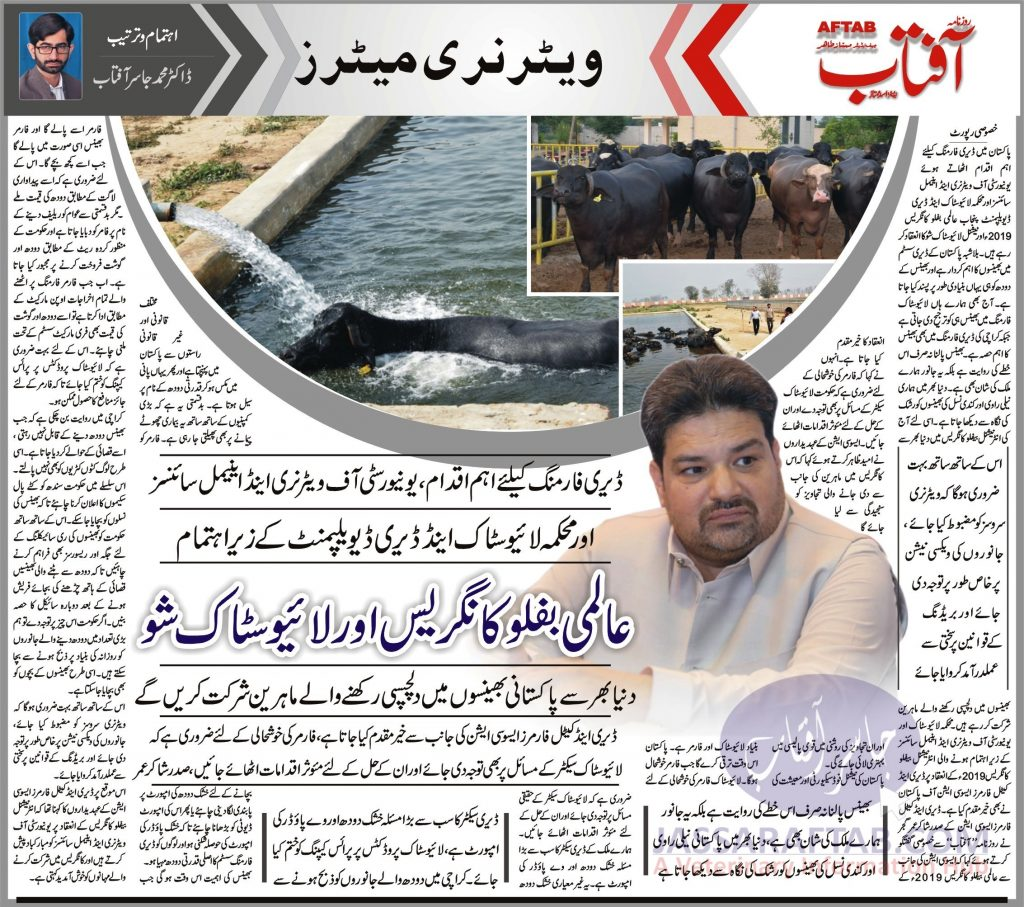 Issues of livestock dairy farming in Pakistan