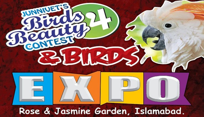 Birds Expo