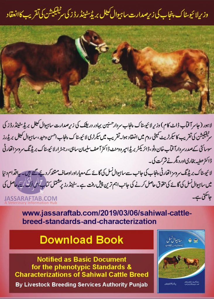 Sahiwal Cow is the Breed of Pakistan