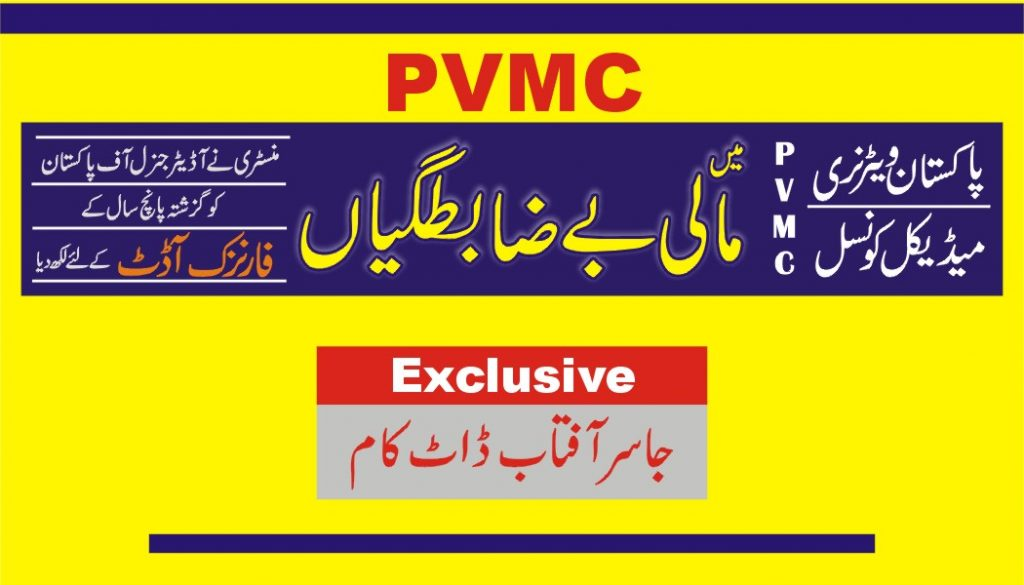 Forensic Audit of PVMC