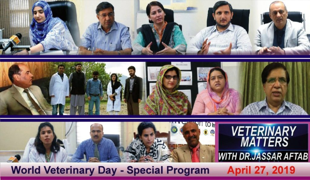 interviews of vets on world veterinary day