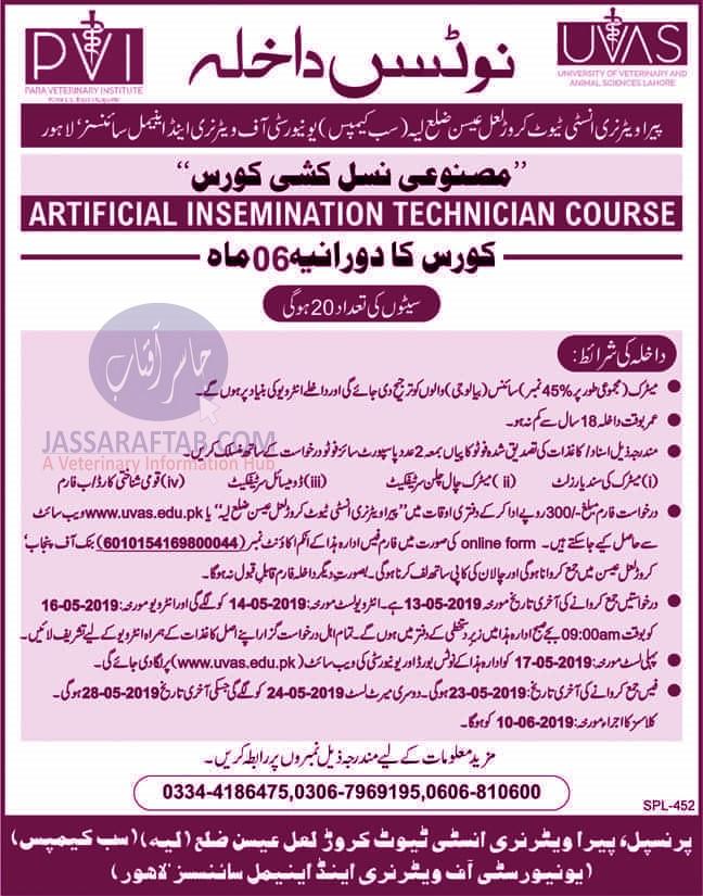 Paraveterinary School AI Course
