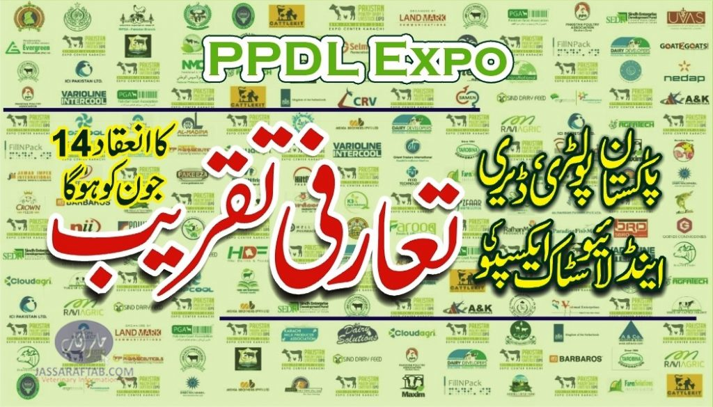 PPDL Expo