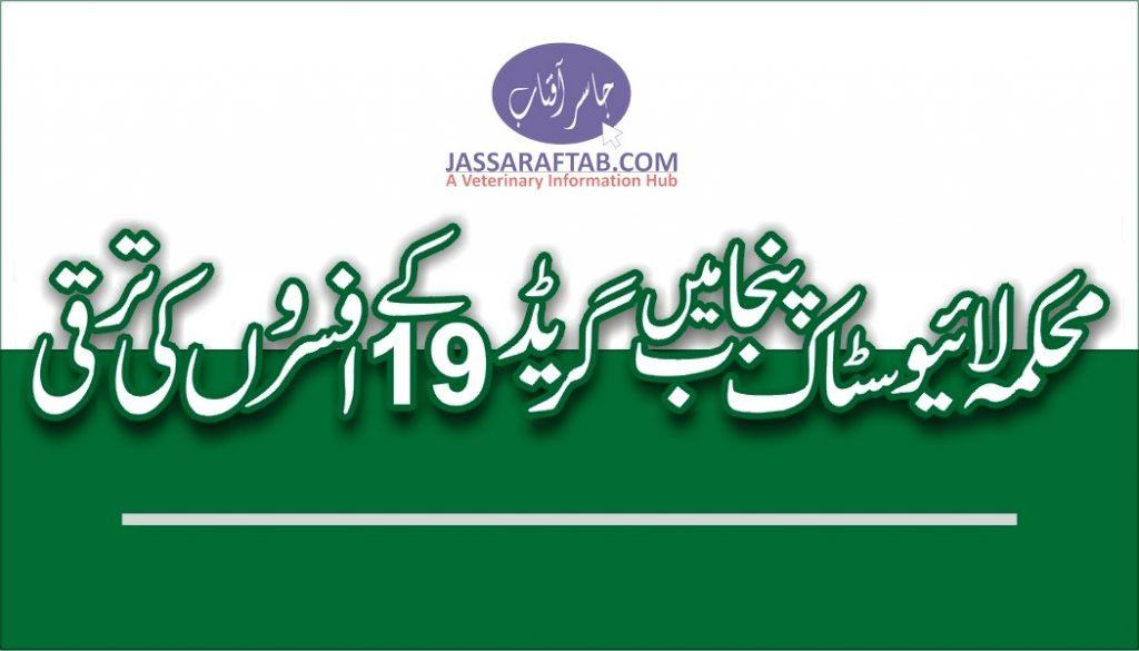 Grade 19 to 20 Promotion Livestock Punjab