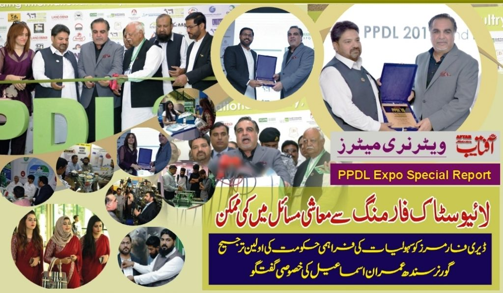 DCFA Pakistan PPDL Report