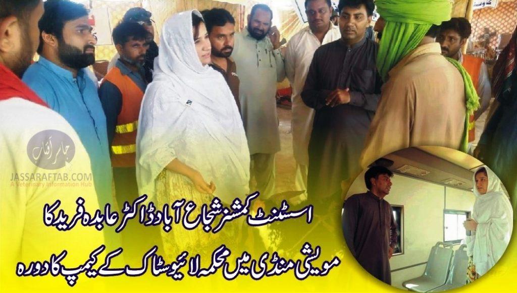 Shujabad Livestock AC Dr. Abida Farid