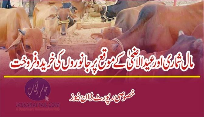Animal census and Baqra Eid trade