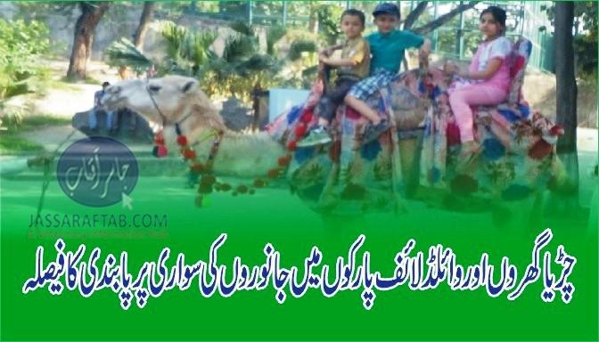 Ban on animal rides