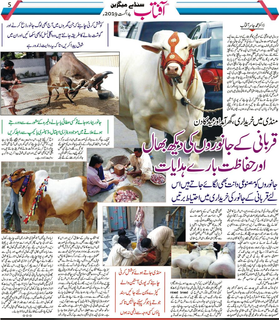 Care of Qurbani Animals