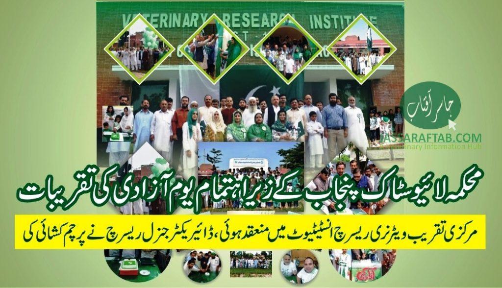Jashn e Azadi Livestock Celebrations