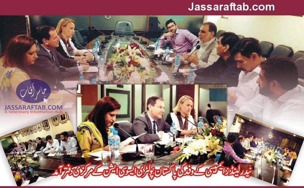 Ambassador Netherlands Pakistan