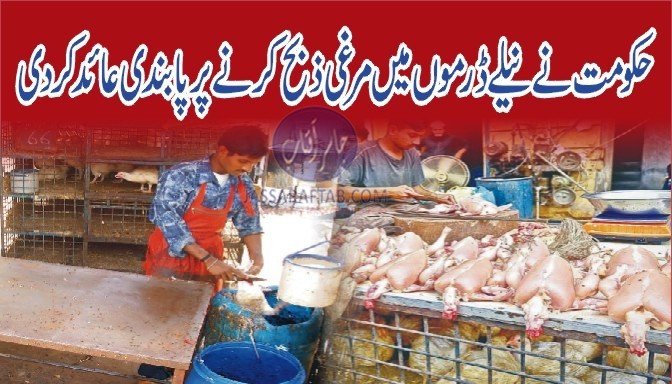 Ban on slaughtering chicken in blue drums