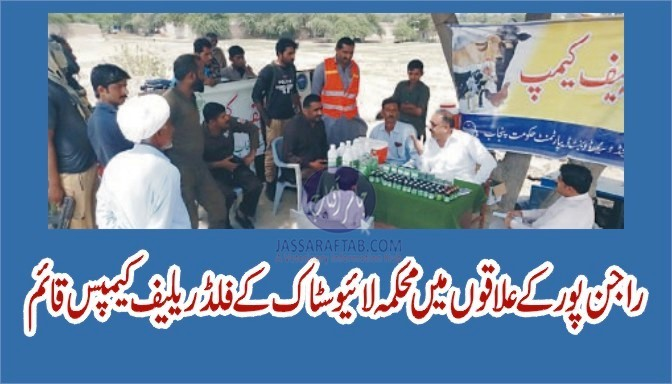 Livestock flood relief camps