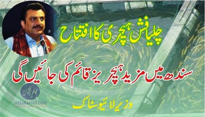 Sindh Fish hatchery chilya