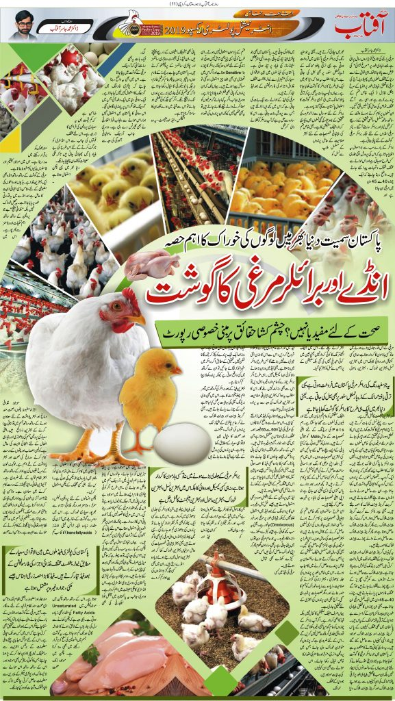 Reality of Broiler Chicken and hormones