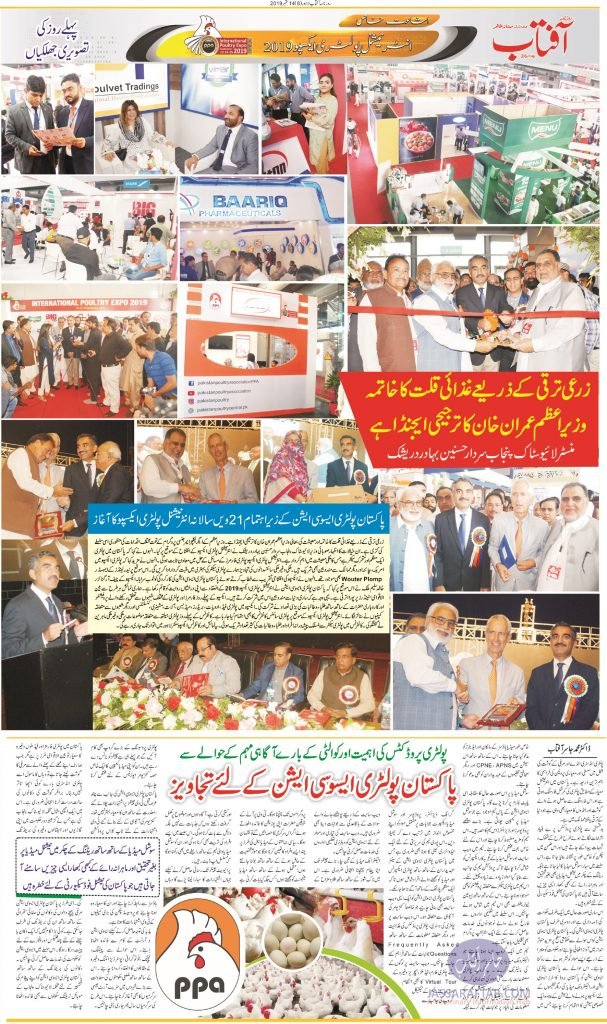 Poultry Expo Photographs