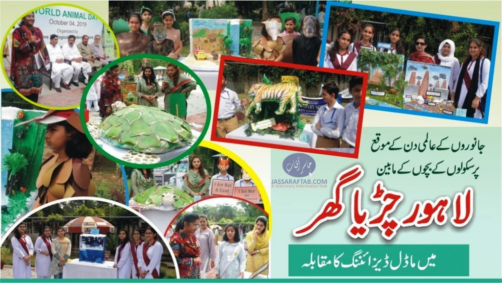 World Animal Day Lahore Zoo