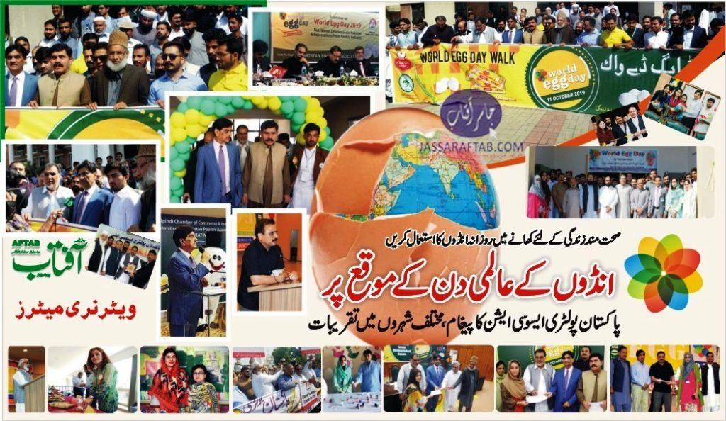 World Egg Day Pakistan Report