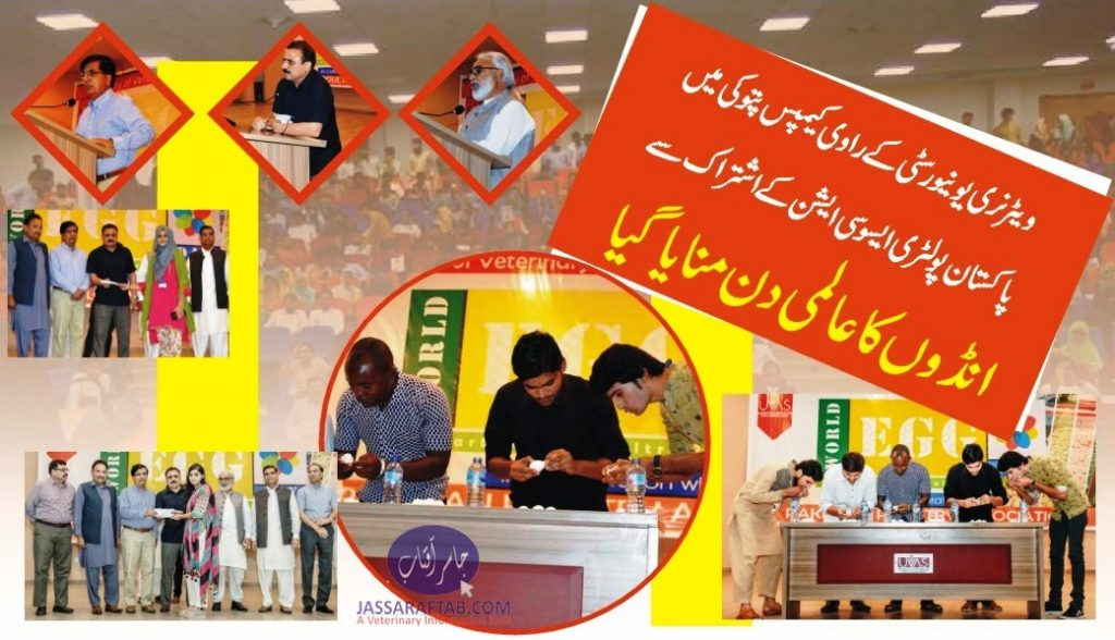 Egg Day 2019 Pakistan