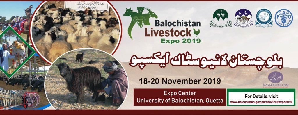Lievestock Balochistan Expo