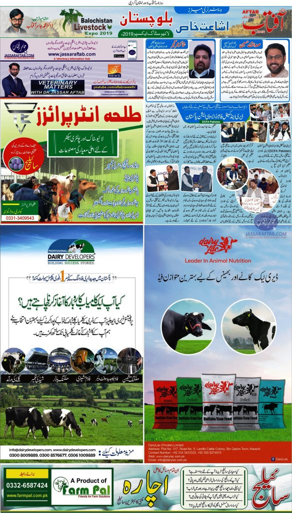 Dairy Livestock Companies