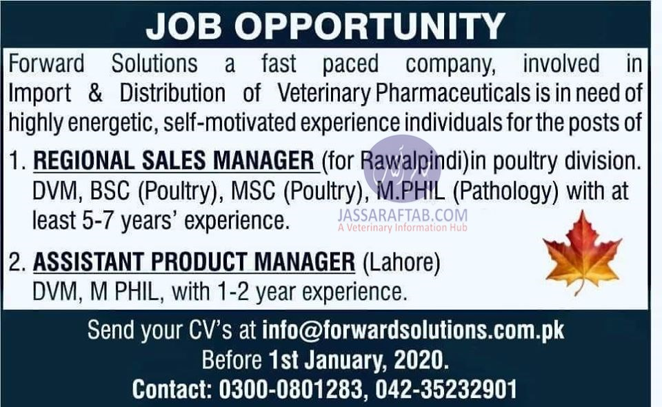Job for veterinary professionals as manager