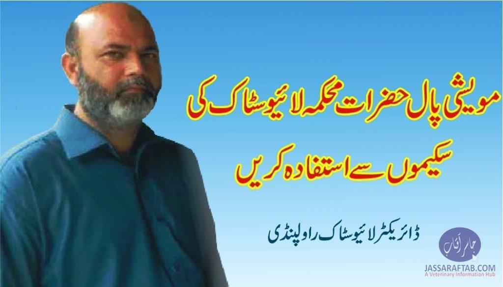 Director livestock Rawalpindi Dr Nadeem