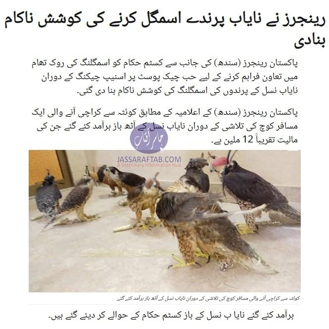 Rangers seized expensive falcons