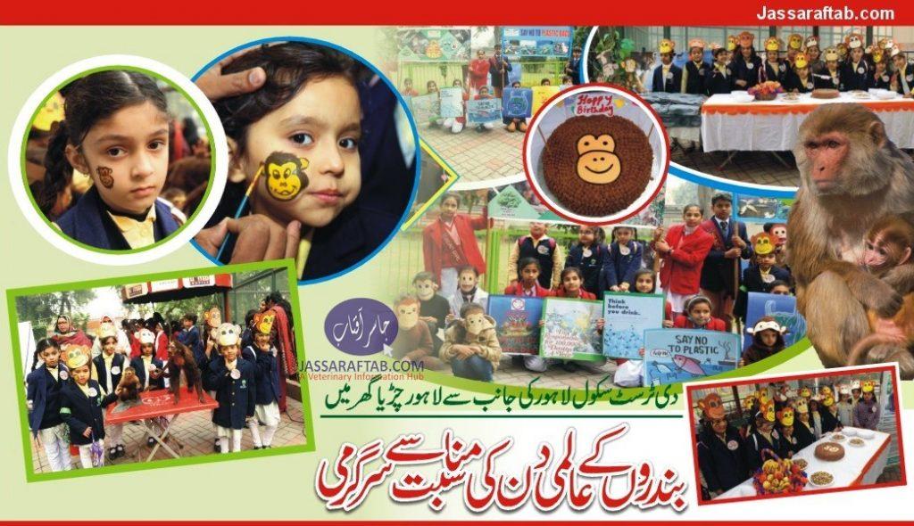 world monkey day Pakistan