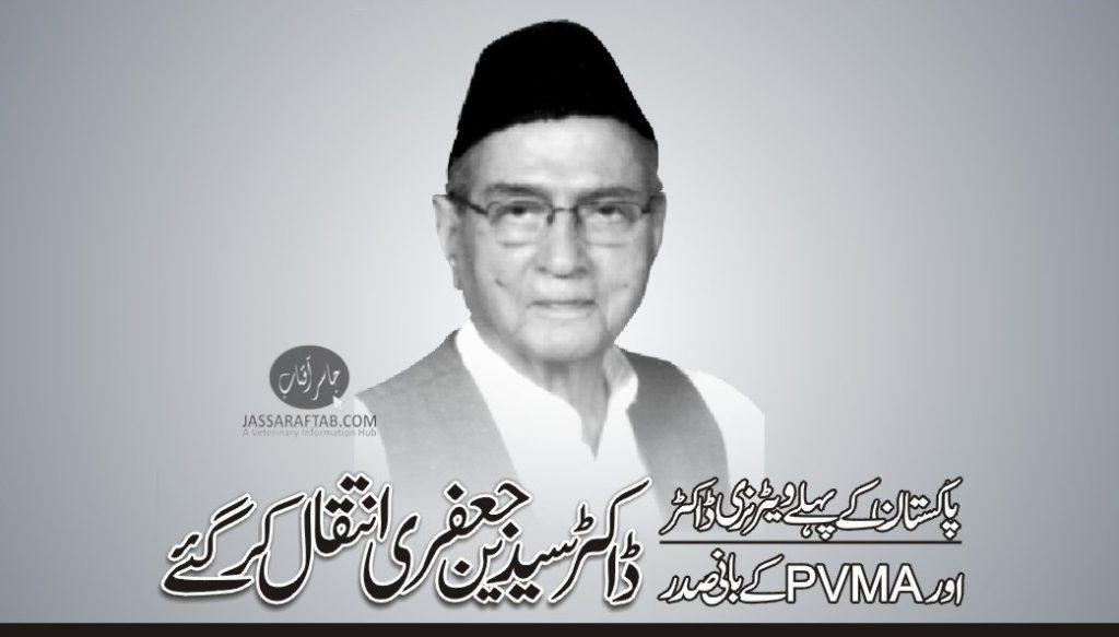 Dr Syedain Jaffery