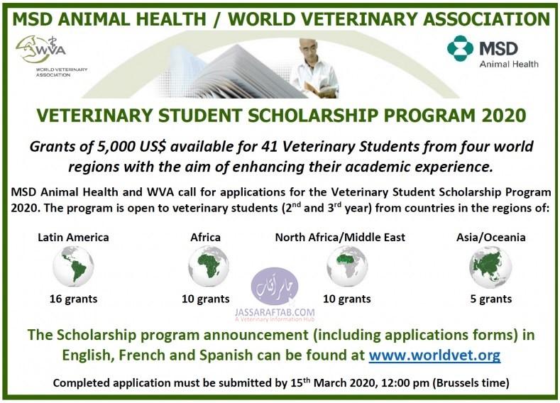world veterinary association scholarship