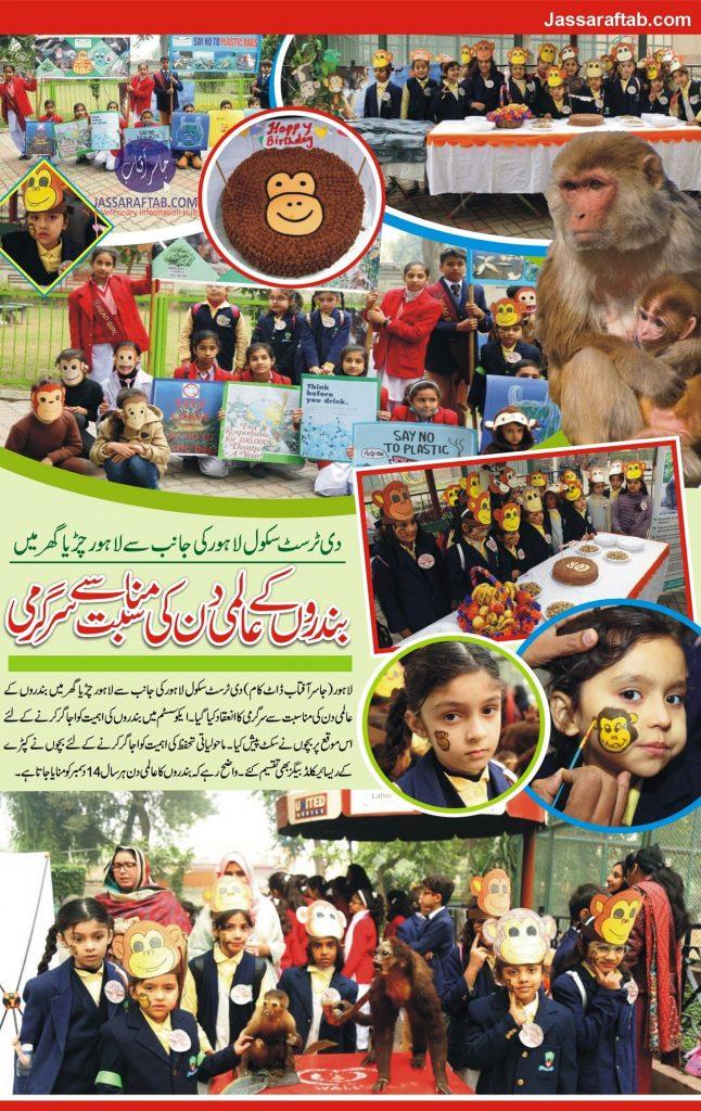 school activity monkey Day Zo