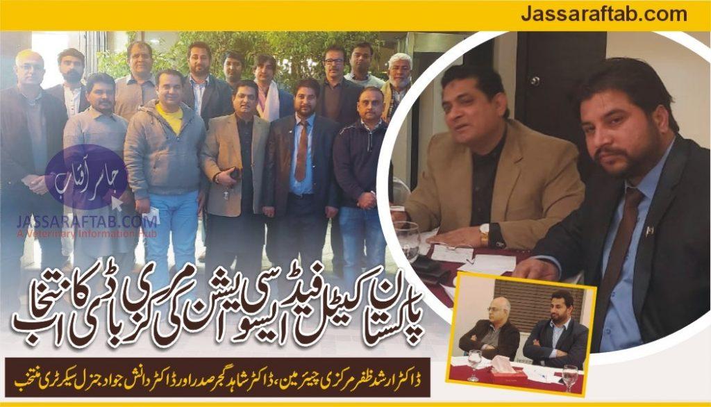 cattle feed association pakistan