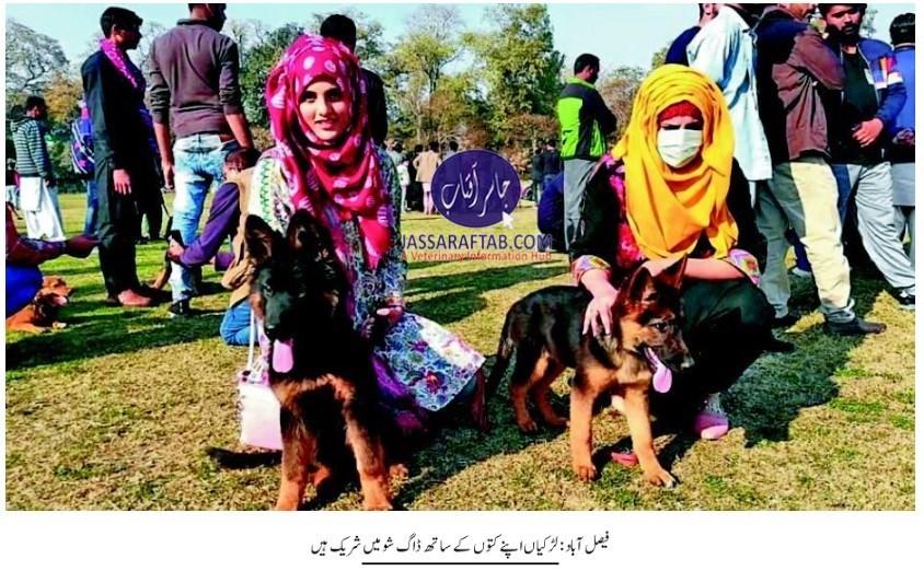 Dog show at UAF