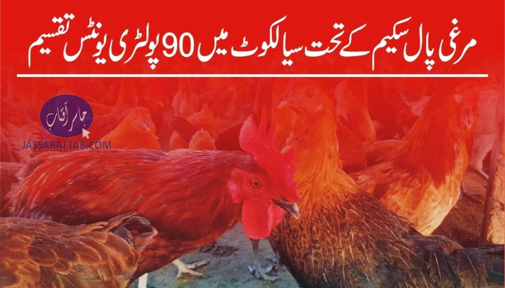 Poultry units distribution in Sialkot