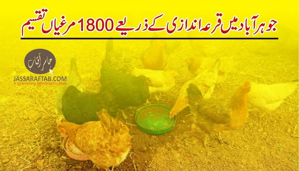 Poultry units distribution